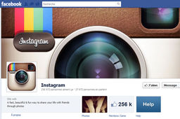 Instagram bientôt disponible sur Windows Phone 8 ?