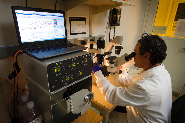L'Institut Curie et Swiss Life veulent prédire l'efficacité de l'immunothérapie contre le cancer grâce à l'IA