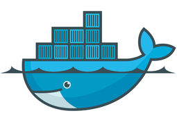 Docker : la start-up d'un frenchie de la Silicon Valley valorisée un milliard de dollars